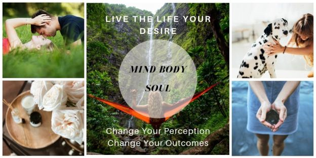 Change Your Perception Change Your Outcomes - Stefan Neff