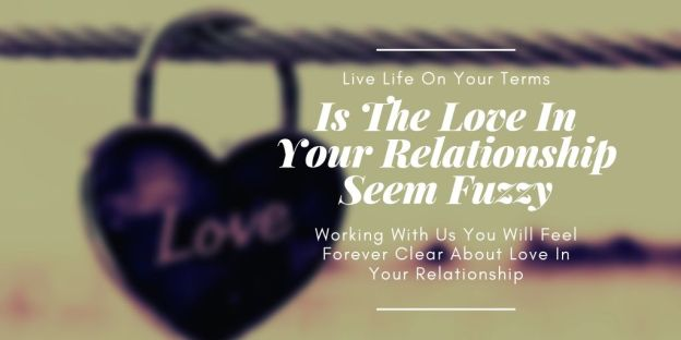 Is The Love In Your Relationship Seem Fuzzy - Stefan Neff